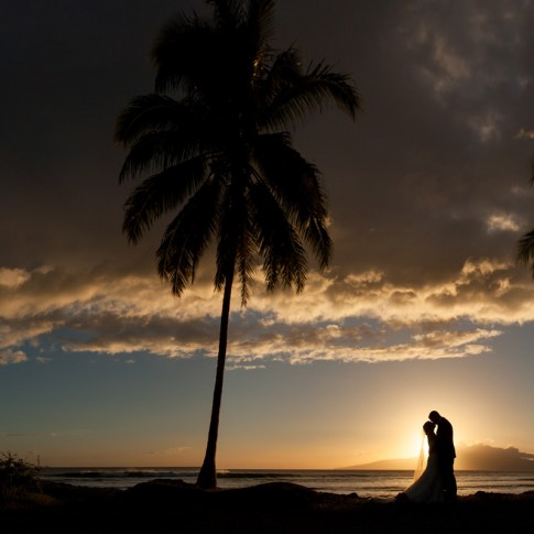 A couple silhouetted against a palm tree liined sunset in Maui.